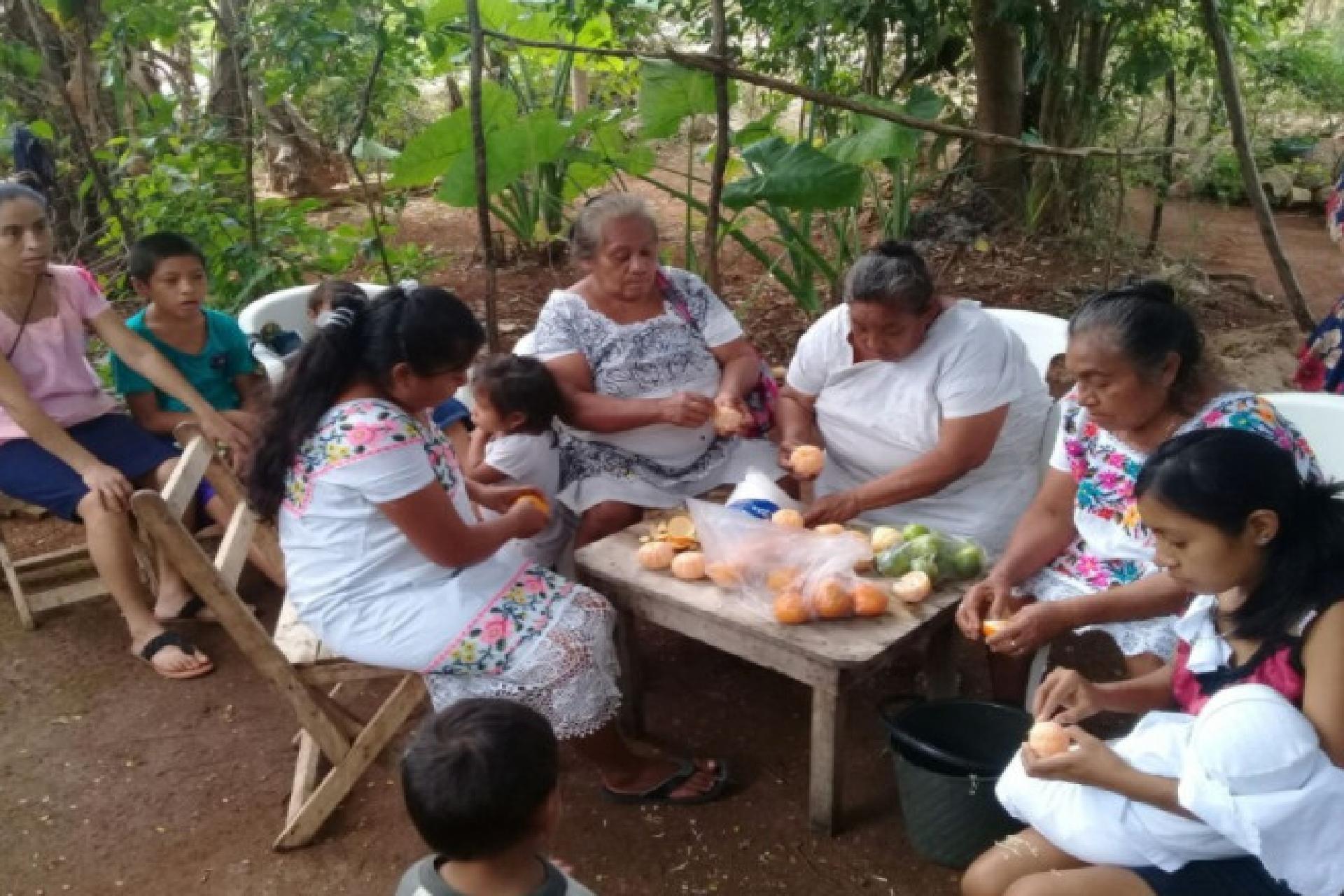Seguridad alimentaria en familias participantes